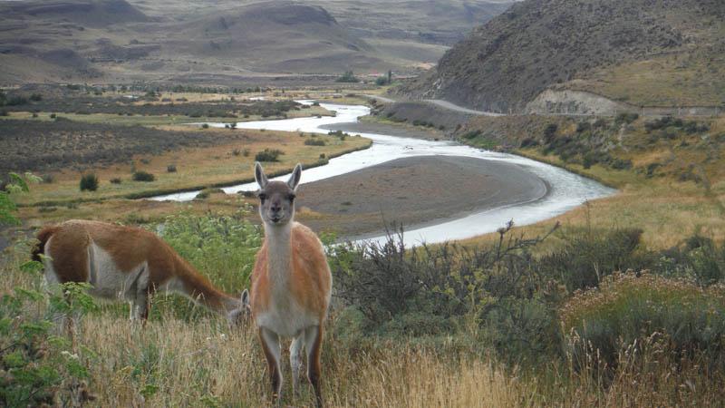 imprescindibles en Chile