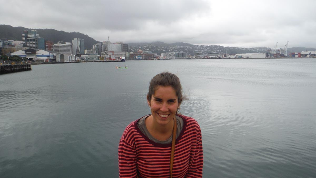 Que ver en Wellington