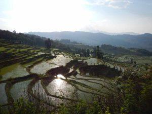 Que ver en Yuanyang