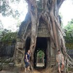 Arbol en Angkor