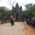 Elefantes en Angkor