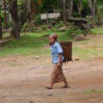 Que ver en el sur de Laos