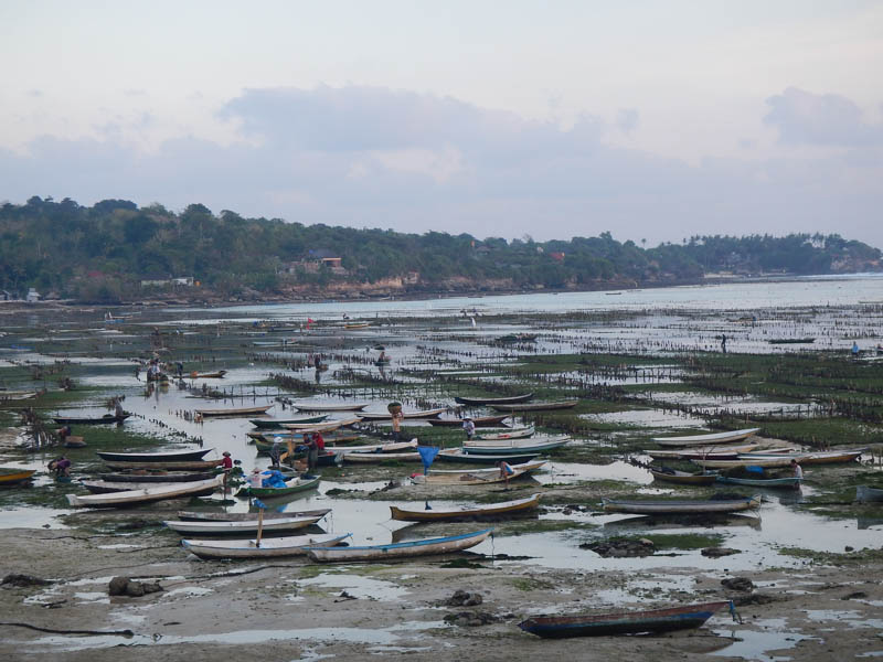 vista del puerto de Lembongan