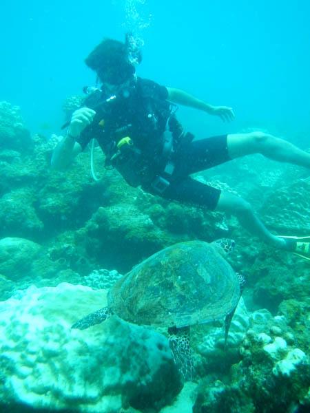 JP buceando con una tortuga