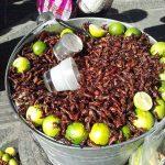 Comer en Mexico