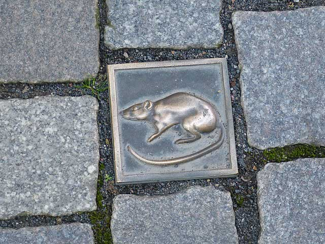 Que hacer en Hannover