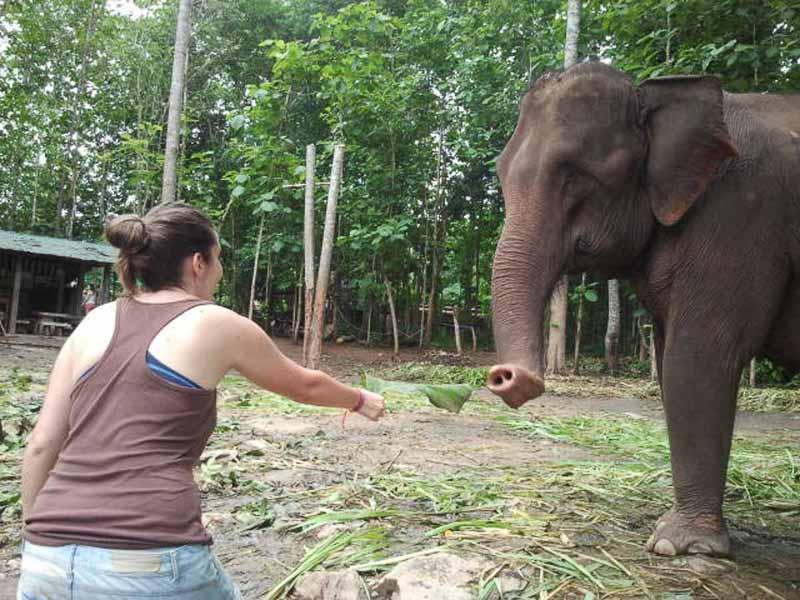 Excursiones en Chiang Mai