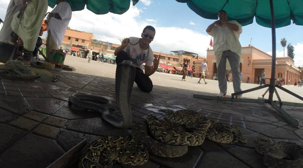 encantadores de serpientes, Marrakech