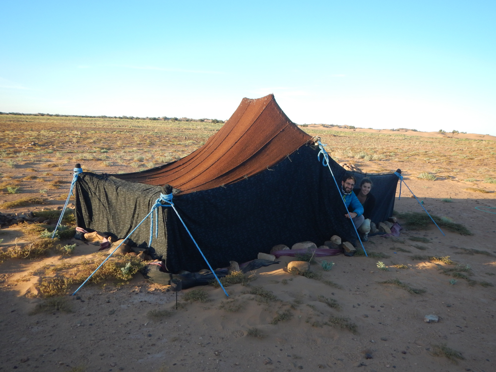 Desierto salvaje