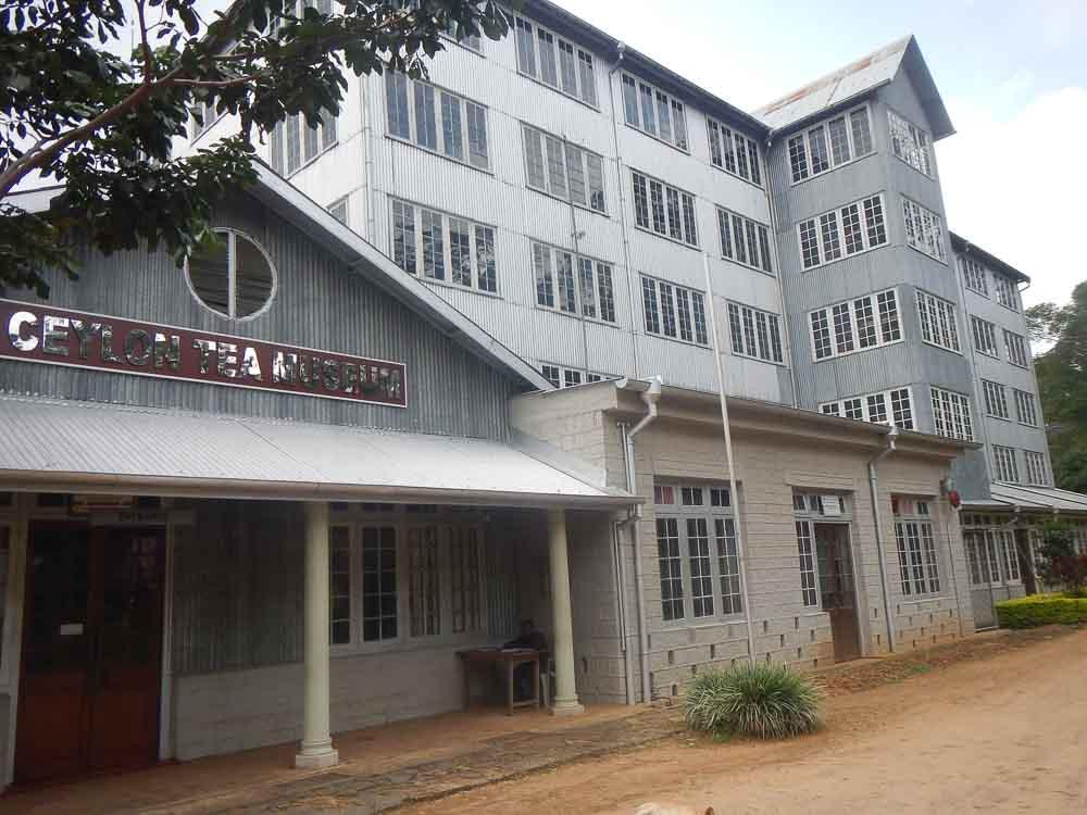 Fabrica de te en Sri Lanka