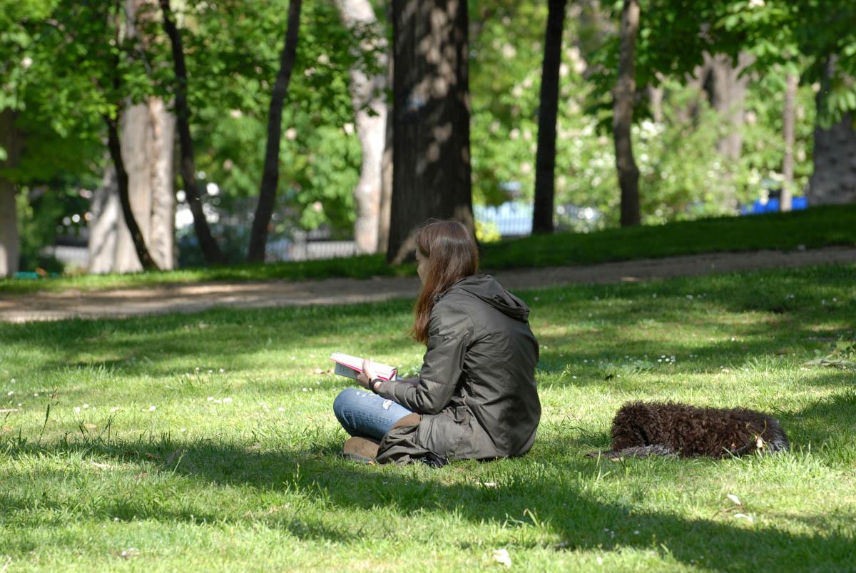 Lectura en el Retiro
