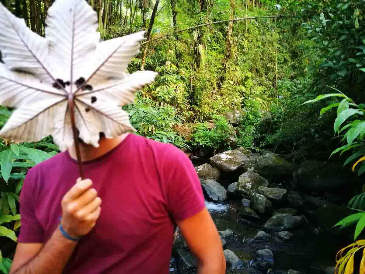 Trekking en Puerto Rico