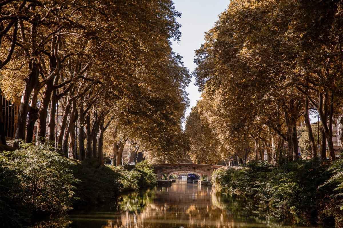 Muelle de la Daurade, Toulouse