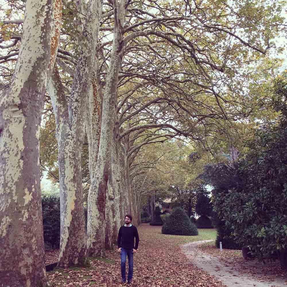 Jardin botanico de Gijon