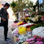 Plaza de las Flores en Cadiz