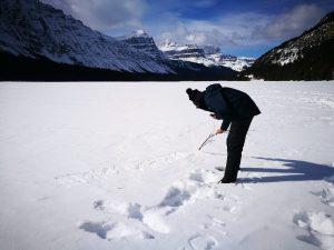 Firmas en la nieve