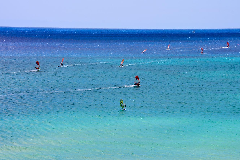 Surferos en Fuerteventura