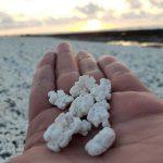 Playa de las palomitas en Fuerteventura