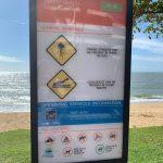 Animales peligrosos en las playas de Australia