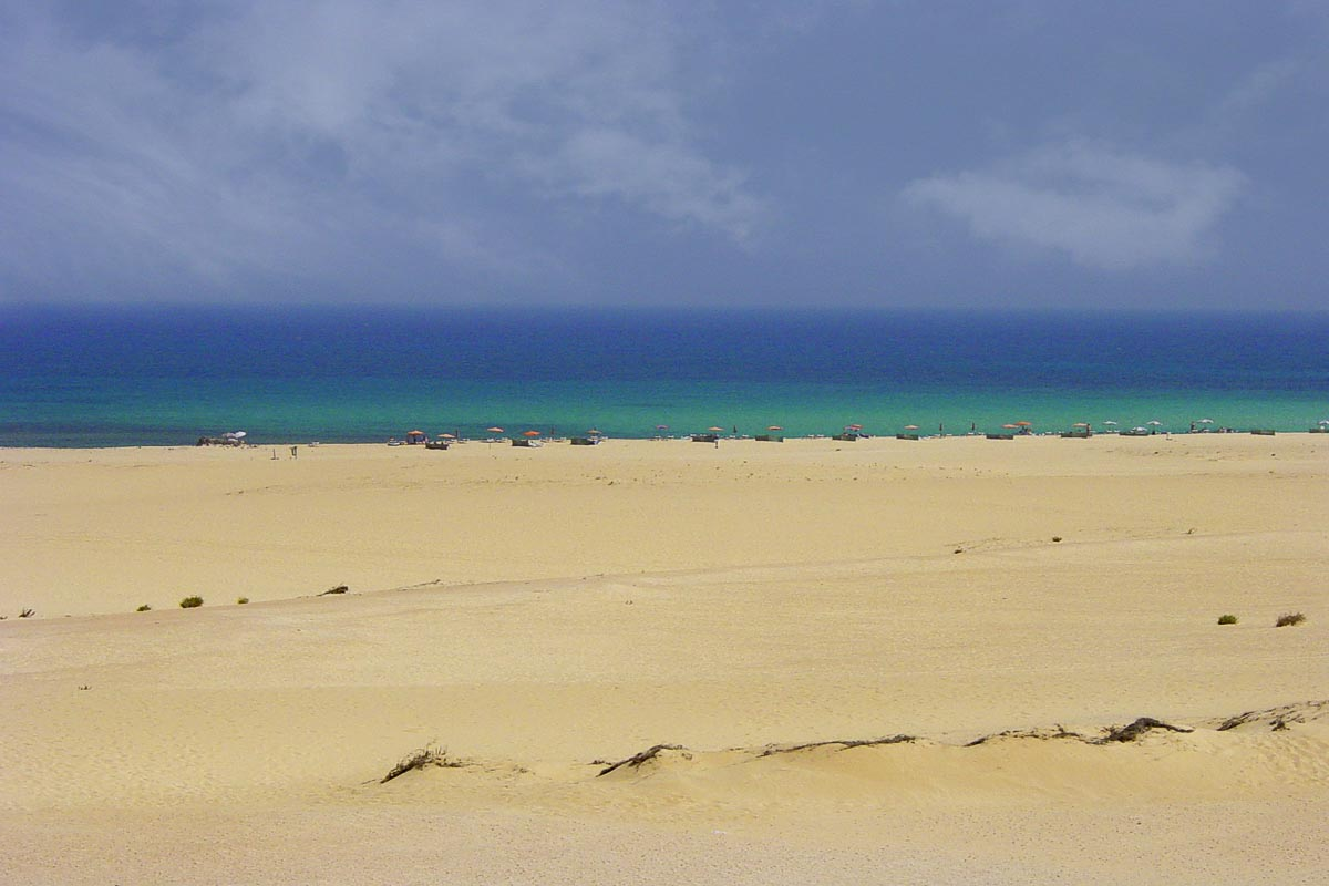 Que ver en Brasil: playas de Jeri