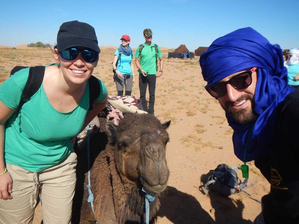 Paseos camellos en el desierto