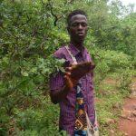 Que hacer en Senegal