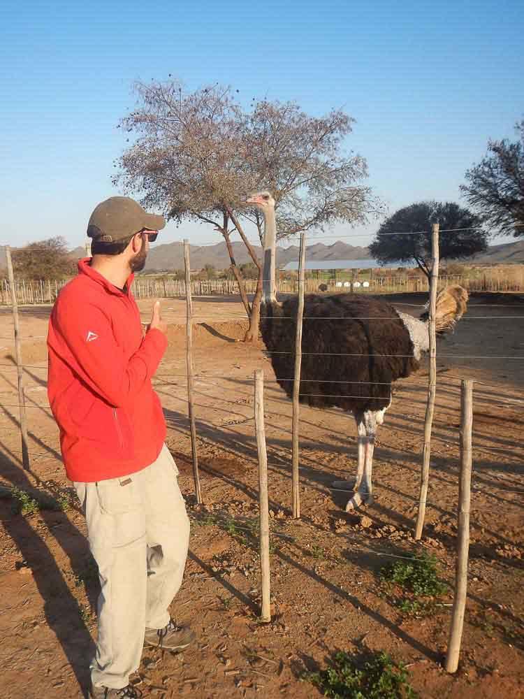 JP y un avestruz